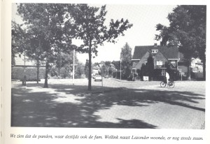 23. Bentheimerstraat Alleeweg 1982